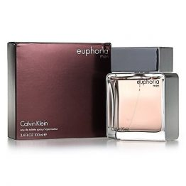 Calvin Klein - EUPHORIA MEN edt 100 ml